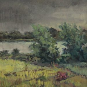 approaching-rain-wexford-artist-Paul_DArcy (1)