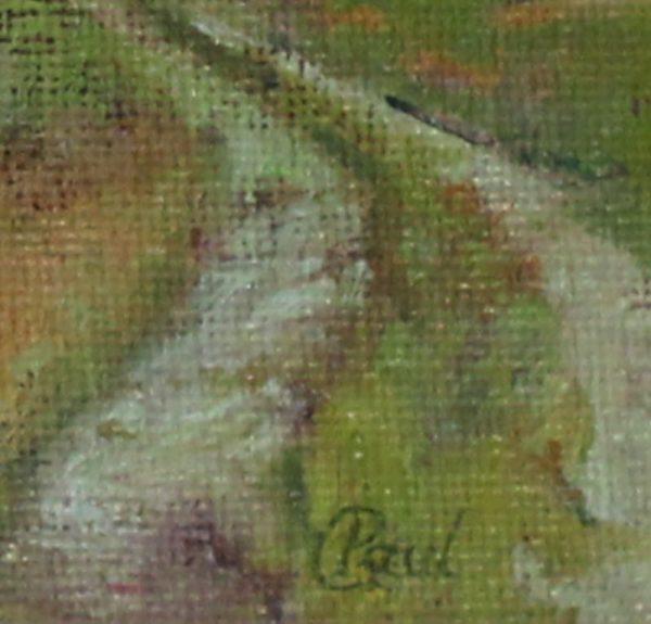 wildes-field-paul-darc